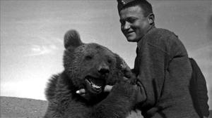 Hero Bear